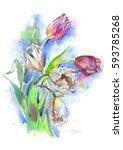bouquet of tulips. flowers...   Shutterstock . vector #593785268