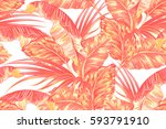 tropical palm leaves  jungle... | Shutterstock .eps vector #593791910