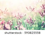 Abstract Dreamy Photo Of Sprin...