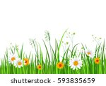 green nature border with grass... | Shutterstock .eps vector #593835659