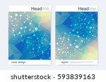 scientific brochure design...   Shutterstock .eps vector #593839163