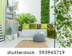 botanical living room with grey ... | Shutterstock . vector #593943719