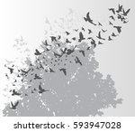 silhouette flying birds on a...