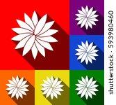 flower sign. vector. set of...