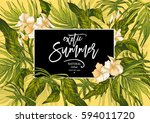 vector summer natural vintage... | Shutterstock .eps vector #594011720