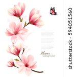 beautiful pink magnolia... | Shutterstock .eps vector #594051560
