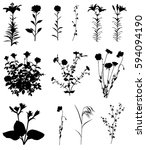 collection of silhouettes of... | Shutterstock .eps vector #594094190