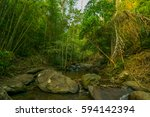 waterfall bang pae phuket... | Shutterstock . vector #594142394