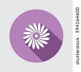 flower icon. chamomile  aster ... | Shutterstock .eps vector #594164600