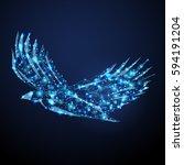 bald eagle fly landing vector... | Shutterstock .eps vector #594191204
