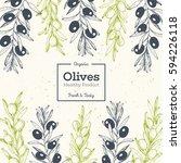 olives hand drawn vector... | Shutterstock .eps vector #594226118