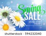 springr sale concept. summer... | Shutterstock . vector #594232040