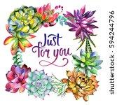 wildflower succulentus flower... | Shutterstock . vector #594244796