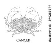 vector illustration of cancer ... | Shutterstock .eps vector #594289979