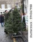 Small photo of London, UK. 11th Dec, 2016. Christmas trees sales brisk at Columbia Flower Market on Sunday in the East End of London in Tower Hamlets.