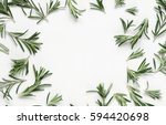 green leaf rosemary on white... | Shutterstock . vector #594420698