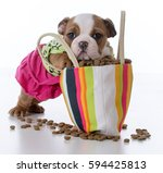 Stock photo cute puppy with paws inside a big purse full of kibble 594425813