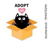 Adopt Me. Dont Buy. Cat Inside...