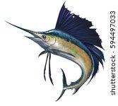 Sailfish On White. Marlin Fish...