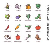 vegetables vegan raw food... | Shutterstock .eps vector #594644378
