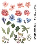 Watercolor Flowers Set For...