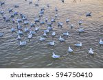 many seagulls float on the sea | Shutterstock . vector #594750410