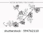 drawing flowers. vector... | Shutterstock .eps vector #594762110