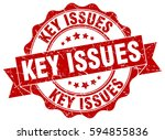 key issues. stamp. sticker.... | Shutterstock .eps vector #594855836