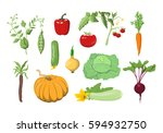 vector illustrations set of... | Shutterstock .eps vector #594932750
