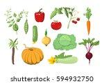vector illustrations set of... | Shutterstock .eps vector #594932750