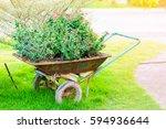 Old Blue Wheelbarrow Full Of...
