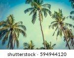 Coconut Palm Trees At Sunny Da...