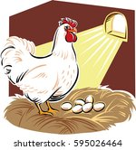 hen in the nest  the eggs to... | Shutterstock .eps vector #595026464