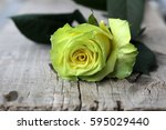 roses on wooden surface | Shutterstock . vector #595029440