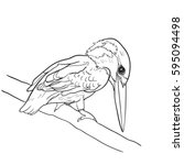 drawing of common kingfisher...   Shutterstock .eps vector #595094498