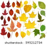 a set of many colorful autumn... | Shutterstock . vector #595212734