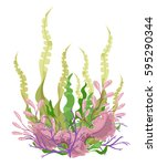 sea plants and aquatic marine...   Shutterstock .eps vector #595290344