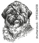graphic portrait of dog shihtzu ... | Shutterstock .eps vector #595336058