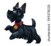 Black Scottish Terrier Breed...