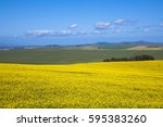 rape at south africa | Shutterstock . vector #595383260