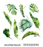 watercolor illustration of... | Shutterstock . vector #595530590