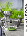 Small photo of Extraction of Wheatgrass in Action on the Kitchen Countertop using a Metal Manual Juicer