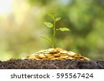 a tree growing from pile of... | Shutterstock . vector #595567424