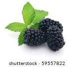 Fresh blackberry - stock photo