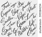 eco  bio  vegan hand drawn... | Shutterstock .eps vector #595584254