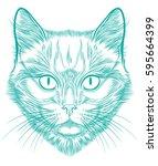 cat portrait hand drawn in... | Shutterstock .eps vector #595664399