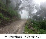 view of road in the jungle ...   Shutterstock . vector #595701578