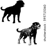rottweiler dog silhouette and... | Shutterstock .eps vector #595715360