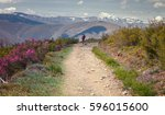 the walking of a pilgrim on a... | Shutterstock . vector #596015600