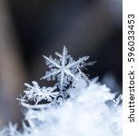 natural snowflakes on snow ... | Shutterstock . vector #596033453